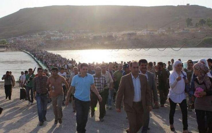 I Profughi della guerra siriana (di A. Tomaselli, A. Russick, L. Giacona, V. Celesti, C. Mancuso, D. De Luca)