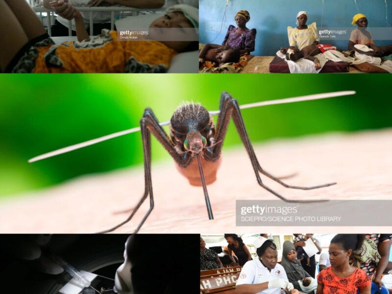 La malaria (di A. Dettori, S. Cherchi, S. Dessì)